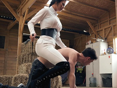 Brazzers HD: Horsing Around Almost Be passed on Stable Boy Jasmine Jae and Jordi El Niño Polla